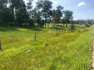 Photo 3: Hwy 780 Twp Rd 470: Rural Wetaskiwin County Rural Land/Vacant Lot for sale : MLS®# E4235412