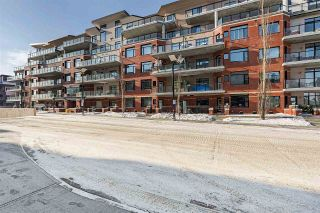 Photo 41: 303 141 FESTIVAL Way: Sherwood Park Condo for sale : MLS®# E4228912