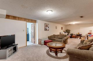 Photo 20: 11 Bedwood Place NE in Calgary: Beddington Heights Detached for sale : MLS®# A1100658