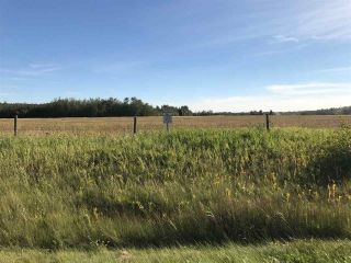 Photo 6: 57525 Rg Rd 214: Rural Sturgeon County Rural Land/Vacant Lot for sale : MLS®# E4237624