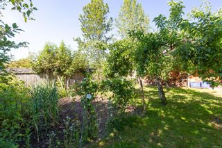Photo 46: 517 Kennedy St in : Na Old City Full Duplex for sale (Nanaimo)  : MLS®# 882942