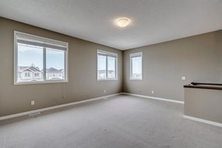 Photo 22: 1571 COPPERFIELD Boulevard SE in Calgary: Copperfield Detached for sale : MLS®# A1107569