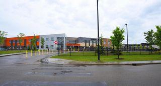 Photo 45: 4110 ALLAN Crescent in Edmonton: Zone 56 House for sale : MLS®# E4249253
