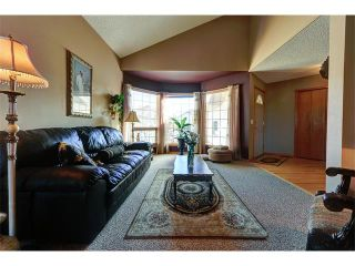 Photo 2: 48 RIVERVIEW Close SE in Calgary: Riverbend House for sale : MLS®# C4019048