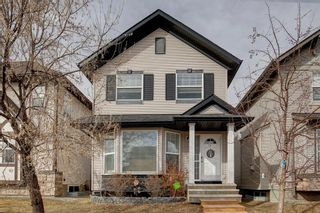 Main Photo: 116 SILVERADO PLAINS View SW in Calgary: Silverado Detached for sale : MLS®# A1087067