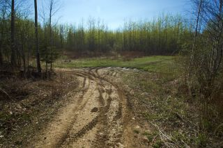 Photo 33: RR 21 TWP 565A Lake Nakamun: Rural Lac Ste. Anne County Rural Land/Vacant Lot for sale : MLS®# E4246330