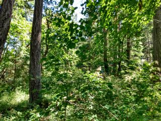 Photo 6: 20 Pirate Pl in : Isl Protection Island Land for sale (Islands)  : MLS®# 878593