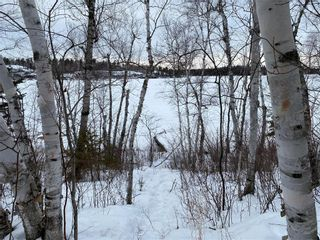 Photo 7: 21 Lot Block 5 Road in West Hawk Lake: R29 Residential for sale (R29 - Whiteshell)  : MLS®# 202103930