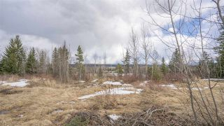 Photo 16: 2455 PARENT Road in Prince George: St. Lawrence Heights Land for sale (PG City South (Zone 74))  : MLS®# R2548505