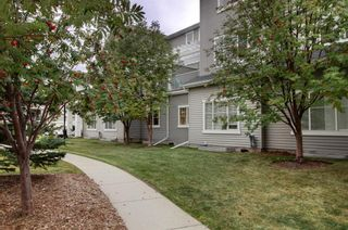 Photo 27: 1503 281 Cougar Ridge Drive SW in Calgary: Cougar Ridge Row/Townhouse for sale : MLS®# A1149149