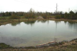 Photo 5: 475547 County Road 11 in Amaranth: Rural Amaranth Property for sale : MLS®# X4667613