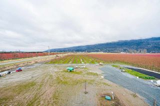Photo 16: 40320 NO. 5 Road in Abbotsford: Sumas Prairie Agri-Business for sale : MLS®# C8036514