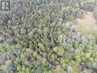 Photo 6: Lot 1 Headline Road in Lower Cornwall: Vacant Land for sale : MLS®# 202123037