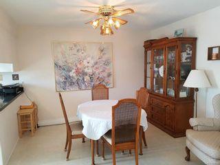 Photo 5: 203 3140 Louise Street in Saskatoon: Nutana S.C. Residential for sale : MLS®# SK614140