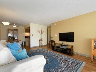 Photo 5: 215 777 Cook St in : Vi Downtown Condo for sale (Victoria)  : MLS®# 867586