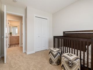 Photo 21: 22524 80 Avenue in Edmonton: Zone 58 House for sale : MLS®# E4236820