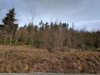 Photo 15: 4670 Goldstream Heights Dr in MALAHAT: ML Shawnigan House for sale (Malahat & Area)  : MLS®# 753133