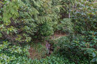 Photo 10: 12414 MCNUTT Road in Maple Ridge: Northeast House for sale : MLS®# R2560793