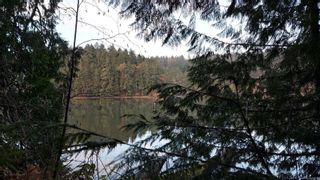 Photo 5: 304 Eagle Ridge Dr in : GI Salt Spring Land for sale (Gulf Islands)  : MLS®# 863149