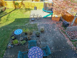 Photo 44: 2800 Windermere Ave in CUMBERLAND: CV Cumberland House for sale (Comox Valley)  : MLS®# 829726
