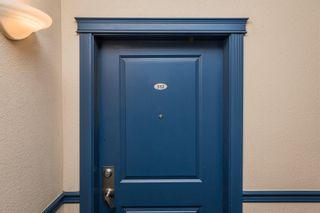 Photo 3: 512 11325 83 Street in Edmonton: Zone 05 Condo for sale : MLS®# E4245671