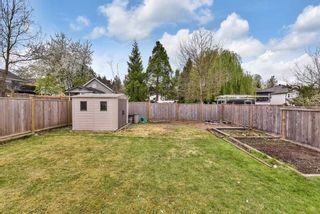 Photo 26: 22441 MORSE Crescent in Maple Ridge: East Central House for sale : MLS®# R2573141