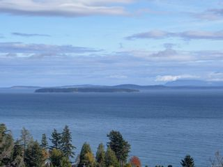 Photo 7: 5063 Catalina Terr in : SE Cordova Bay House for sale (Saanich East)  : MLS®# 859966