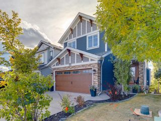 Photo 44: 203 SAGEWOOD Boulevard SW: Airdrie Detached for sale : MLS®# A1037053