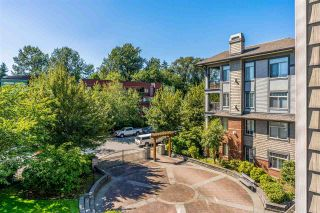 "Photo 16: 302 12020 207A Street in Maple Ridge: Northwest Maple Ridge Condo for sale in ""WESTBROOKE"" : MLS®# R2525761"
