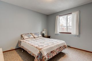 Photo 38: 2108 51 Avenue SW in Calgary: North Glenmore Park Detached for sale : MLS®# A1058307