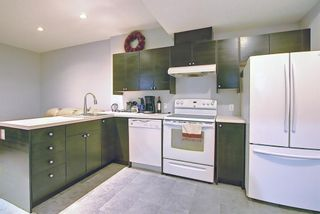 Photo 36: 113 Saddlelake Green NE in Calgary: Saddle Ridge Detached for sale : MLS®# A1127536