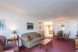 "Photo 16: 9439 214 Street in Langley: Walnut Grove House for sale in ""Walnut Grove"" : MLS®# R2548542"