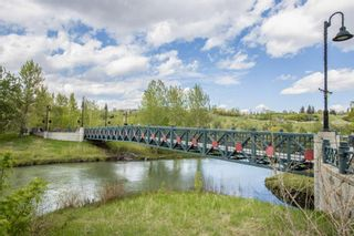 Photo 32: 353 222 Riverfront Avenue SW in Calgary: Chinatown Apartment for sale : MLS®# A1126286