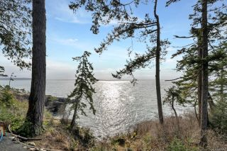 Photo 23: 2476 Lighthouse Pt in : Sk Sheringham Pnt House for sale (Sooke)  : MLS®# 867116