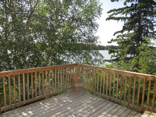 Photo 4: Fish Lake Cabin in Fish Lake: Residential for sale : MLS®# SK834397