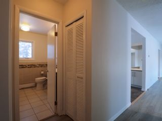 Photo 15: 358 Ennis Crescent in Treherne: House for sale : MLS®# 202028582