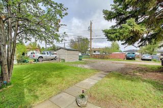 Photo 25: 4928 47 Street: Innisfail Detached for sale : MLS®# A1134250