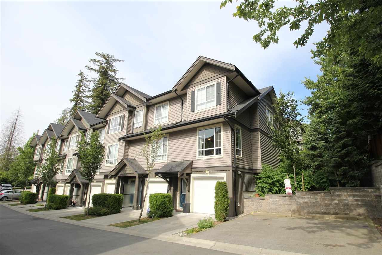 """Main Photo: 34 4967 220 Street in Langley: Murrayville Townhouse for sale in """"Winchester"""" : MLS®# R2275633"""