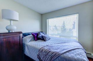 Photo 29: 301 17404 64 Avenue NW in Edmonton: Zone 20 Condo for sale : MLS®# E4245502