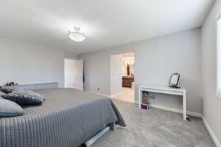 Photo 29: 8515 216 Street in Edmonton: Zone 58 House for sale : MLS®# E4264294