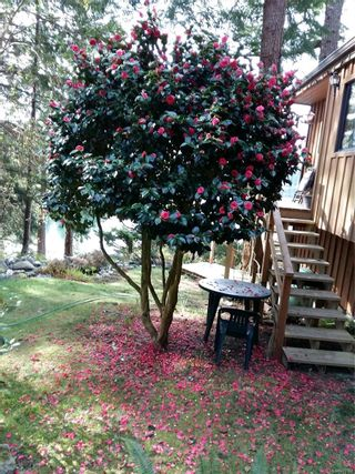 Photo 67: 1255 Huntley Rd in : Isl Quadra Island House for sale (Islands)  : MLS®# 873207