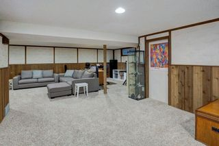 Photo 20: 527 MURPHY Place NE in Calgary: Mayland Heights Detached for sale : MLS®# C4297429