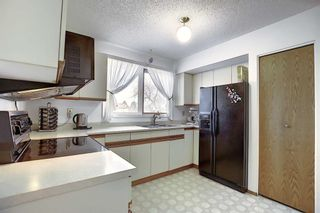 Photo 12: 3711 39 Street NE in Calgary: Whitehorn Detached for sale : MLS®# A1063183