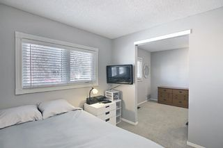 Photo 7: 2735 41A Avenue SE in Calgary: Dover Detached for sale : MLS®# A1082554
