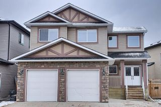 Photo 46: 6 Baysprings Terrace SW: Airdrie Detached for sale : MLS®# A1092177