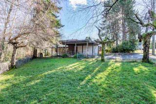 Photo 22: 1266 SPRINGER Avenue in Burnaby: Brentwood Park House for sale (Burnaby North)  : MLS®# R2535603