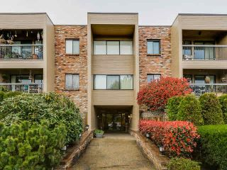 Photo 1: 102 1825 W 8TH Avenue in Vancouver: Kitsilano Condo for sale (Vancouver West)  : MLS®# V1110408