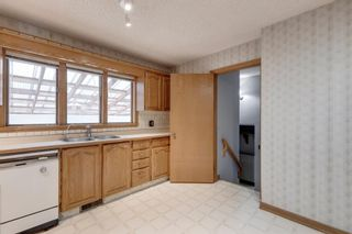 Photo 16: 2935 Burgess Drive NW in Calgary: Brentwood Detached for sale : MLS®# A1132281