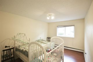 """Photo 3: 156 8131 RYAN Road in Richmond: South Arm Condo for sale in """"MAYFAIR COURT"""" : MLS®# R2340034"""