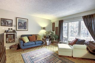 Photo 7: 303 215 25 Avenue SW in Calgary: Mission Apartment for sale : MLS®# A1063932